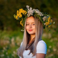 Алиса :: Людмила
