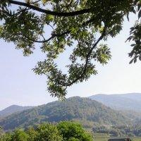 Домик в горах :: Наталия Каминская