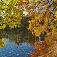 Золотой Остров... :: Sergey Gordoff