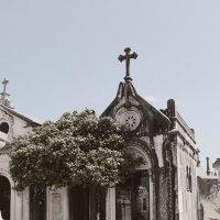Склеп на кладбище в Куимбре :: Мария Разоренова