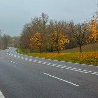 Осенняя дорога. Где-то в Польше. :: Павел Дунюшкин