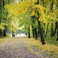 Осень в Царицыно :: Gaivor ina