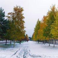 Первый снег :: Sadi Omarov