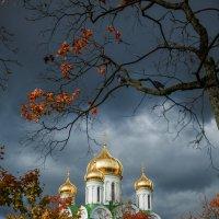 Екатери́нинский собо́р в Пушкине :: Светлана Салахетдинова
