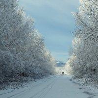 Дорога в Зиму :: Татьяна