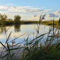 Вечер  на  реке :: Геннадий С.