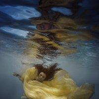 Underwater Lily :: Дмитрий Лаудин