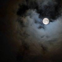 лунный свет :: Вадим Козаков