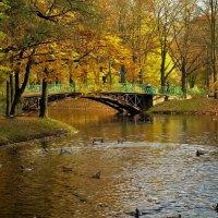 Любуясь милым мостиком... :: Sergey Gordoff