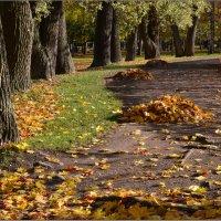 Осенний парк :: Николай Кувшинов