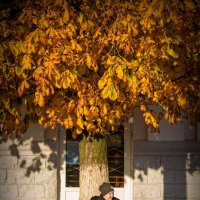 Осень и Темка :: Екатерина Румянцева