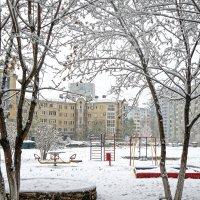 Зима на пороге... :: Elena Izotova