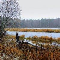 Непогода :: Павлова Татьяна Павлова