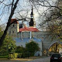 Tallinn. Крепостная стена :: Marina Pavlova
