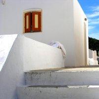 Белое на белом :: Tanja Gerster