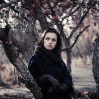 Поздняя осень :: Кристина Пролыгина