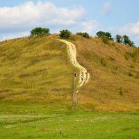 Умный в гору не пойдёт... :: Андрей Лавров