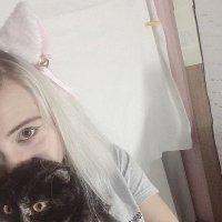 Кошка :: Anastasia Hell