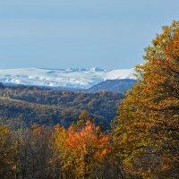 Кавказ уже в снегу :: Петр Заровнев
