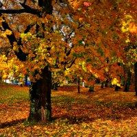 золотая осень :: Lanna