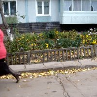 Бегом от холодного ветра :: Нина Корешкова