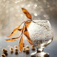 Осенний лист :: Ольга Н