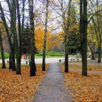В осеннем парке городском. :: Валентина ツ ღ✿ღ