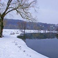 Лебеди над Десной :: Дубовцев Евгений
