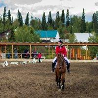 Конный спорт, репортаж :: Владимир Деньгуб