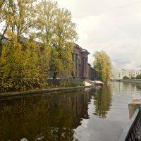 в городе осень :: Елена