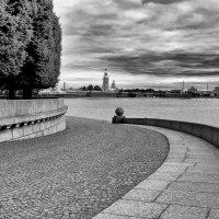 Вид на Петропавловскую крепость со стрелки Васильевского острова :: Оксана Лада