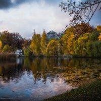 Таврический сад. СПб. :: Ирина Малышева