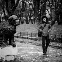 Собака - друг человека :: Lena Veter