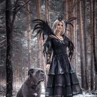 Black queen :: Михаил Васильев