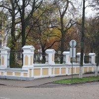 Осень :: Владимир Осипов