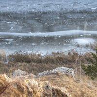Первый лёд на реке :: Михаил Полыгалов