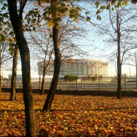 СКК в Санкт-Петербурге :: Galina Belugina