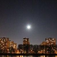 Лунным вечером ноября :: Татьяна Ломтева