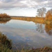 Река Воя :: Татьяна Шаклеина