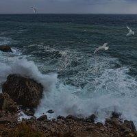 Черное море :: Виктор Мороз