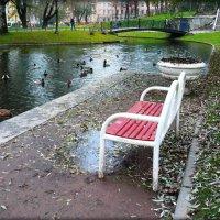Юсуповский сад :: Galina Belugina