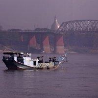 Много разного плавает по Иравади :: Владимир