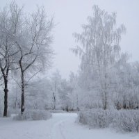 зимнее утро :: Горкун Ольга Николаевна