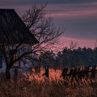 Дом, в котором никто не живет :: Владимир Новиков