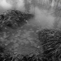 Дыхание осени :: Александр Сергеев