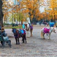 Ноябрь в городе. :: Вахтанг Хантадзе