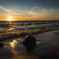 Финский залив вчера.. :: Ирина Малышева