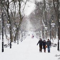 Природа, зима :: Любовь