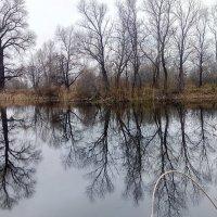 Осеннее озеро :: Александр Алексеев