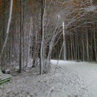 Зима пришла... :: Наталья Жукова